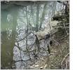 creekwatch