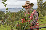 Huon apple guru Bob Magnus